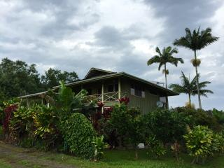 Artist's & Writer's home on Hawaii's Big Island - Papaikou vacation rentals