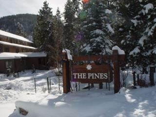 Keystone 3 Bedroom & 3 Bathroom House (2060 The Pines) - Keystone vacation rentals