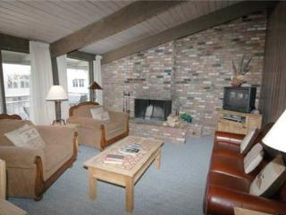 Roaring Fork 36 - Aspen vacation rentals