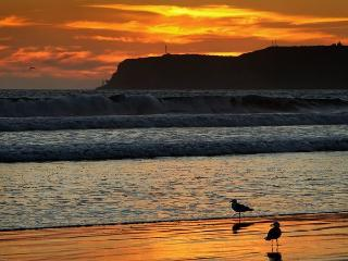 Enjoy Summer - Fabulous Coronado 5 bdrm Beach home - Coronado vacation rentals