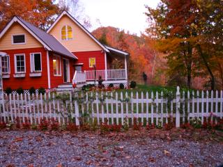 Storybook cottage nesteled in mountains of NC. - Patterson vacation rentals