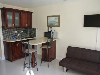 Studio on the Beach 2,Ocho Rios.. - Saint Ann Parish vacation rentals