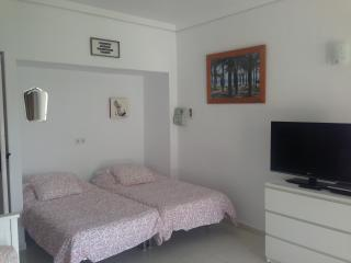 BEAUTIFUL STUDIO APT, LA CARIHUELA, NR TORREMOLINO - Torremolinos vacation rentals