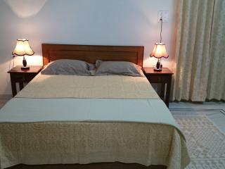 Comfortable Bed and Breakfast with Internet Access and A/C - Jodhpur vacation rentals