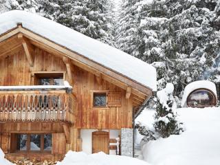 Magical Winter Wonderland Chalet - Argentiere - Argentiere vacation rentals