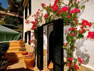 Villa nicole garden Apartment - Soller vacation rentals