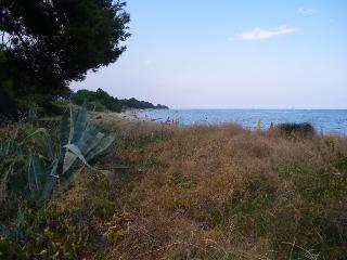 U  NESPULU / 100 M2 + terrasse 40 M2 ,3 chambres - Santa Lucia di Moriani vacation rentals