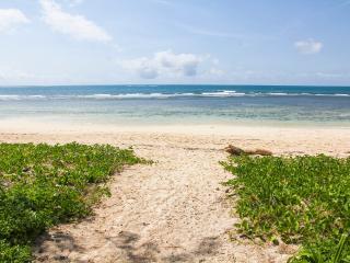 Nice Beach hut with A/C and Parking - Msambweni vacation rentals