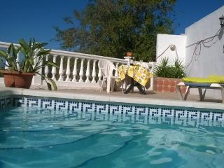 Perfect Villa with Internet Access and Dishwasher - Iznate vacation rentals