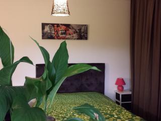chambre lit 2 pers petit déjeuner offert - Saint-Vincent-de-Tyrosse vacation rentals