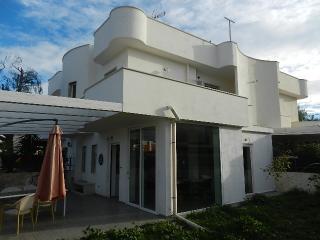 Beautifull House near Sea - Bisceglie vacation rentals