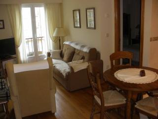 Apartment 6 places 8 min walk beach - San Sebastian - Donostia vacation rentals
