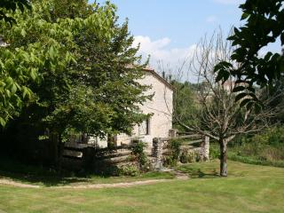 Sunny Cottage with Internet Access and Garden - Loubes-Bernac vacation rentals