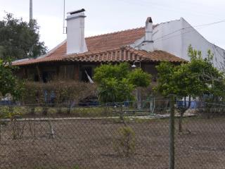 Nice 3 bedroom Cottage in Grandola - Grandola vacation rentals
