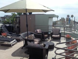 1833sf 2bd 2ba 50 yds to Beach & 500sf Oceandeck! - Los Angeles vacation rentals