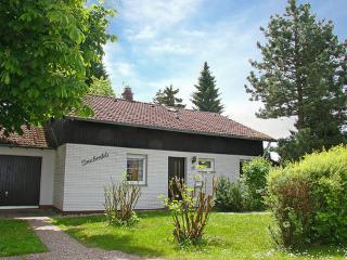 Haus Drachenfels ~ RA13419 - Dittishausen vacation rentals