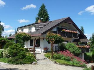 Haus Weidenbrügge ~ RA13417 - Dittishausen vacation rentals