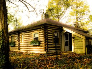 Log Cabin on a Lake near Saint Louis - Union vacation rentals