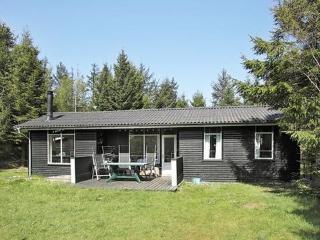 Nr. Lyngby ~ RA13941 - Lokken vacation rentals