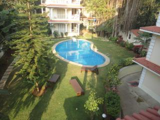 A dwelling besides the hill. river and woods - Siolim vacation rentals