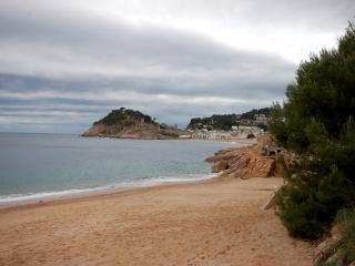 SEA VIEWS APARTMENT on the BEACH - Tossa de Mar vacation rentals
