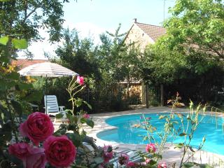 Le Catalpa - Private Heatable pool - Saint-Benoît-du-Sault vacation rentals