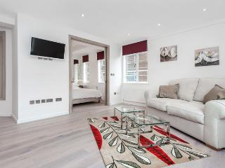 Stunning central London Chelsea Serviced apartment - London vacation rentals