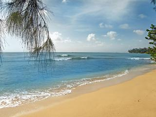 Enjyo 200m of beach frontage at this villa. BS SHE - Saint Lucy vacation rentals