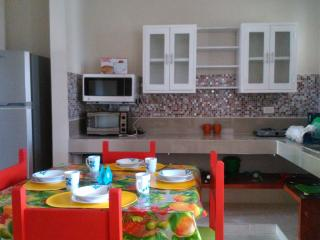 Nice apartment just steps from the malecon - Yucatan vacation rentals
