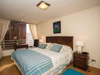 Comfortable apt in Providencia - Santiago vacation rentals
