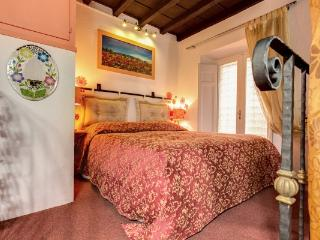CR504 - CASA LEOPARD CHRISTMAS & NEW YEAR LAST MINUTE OFFER - Rome vacation rentals
