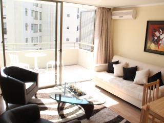 Excellent apartments in Las Condes - Santiago vacation rentals