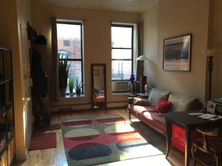Beautiful Full Sunny Apartment in Harlem New York - New York City vacation rentals