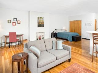 Totally Amazing XL Designer Studio w Skyline Views - Boston vacation rentals