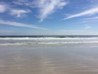 March Cancellation leaves us open! - Flagler Beach vacation rentals