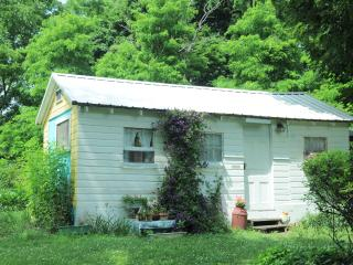 Lovely Cabin with Deck and Internet Access - Hector vacation rentals