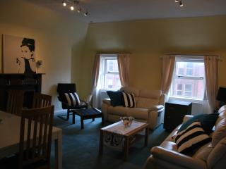 The Green Safe - Massive Apt. Heart of Dublin - County Dublin vacation rentals
