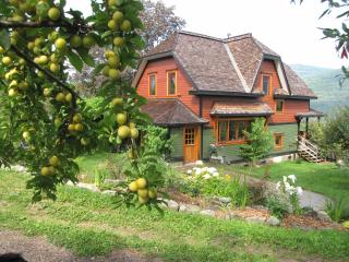 BioBio Suite: Brand New Eco Suite on Organic Farm, - Nelson vacation rentals