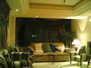 Fully furnished apartment for rent in cairo egypt - Cairo vacation rentals