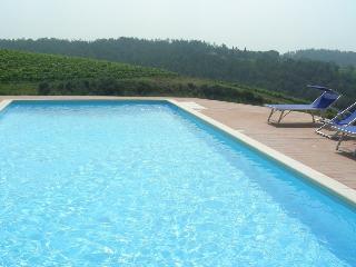 8 bedroom Villa with Internet Access in Malmantile - Malmantile vacation rentals