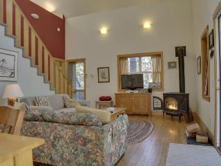 Dog-friendly cabin in the woods with private hot tub! - Brightwood vacation rentals