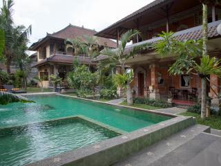 Ubud City Hotel - Ubud vacation rentals
