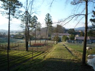 8 bedroom Villa with Internet Access in Lucca - Lucca vacation rentals