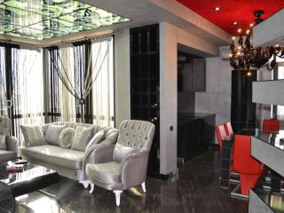 Penthouse on Republic Square - Yerevan vacation rentals