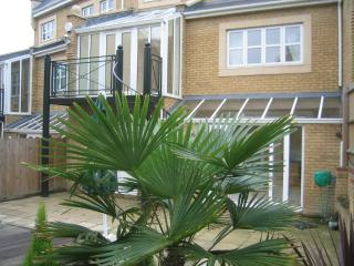 Luxury Opal Brown Suite and Studio Combo - Greenhithe vacation rentals