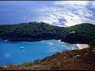 Villa in Private Cape of Fetovaia: magic view at 1 - Fetovaia vacation rentals
