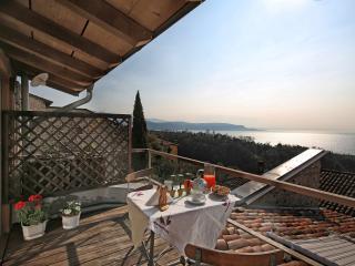 Betta restored  apartment terrace lake view peace - Gardone Riviera vacation rentals
