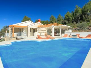***secluded villa with pool*** - Vela Luka vacation rentals