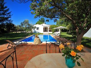 Villa Los Olivos & Private Pool near Ronda - Ronda vacation rentals