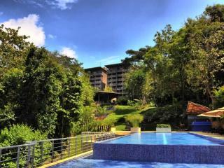 Casa Armadillo enjoy Privacy and Luxury - Manuel Antonio National Park vacation rentals